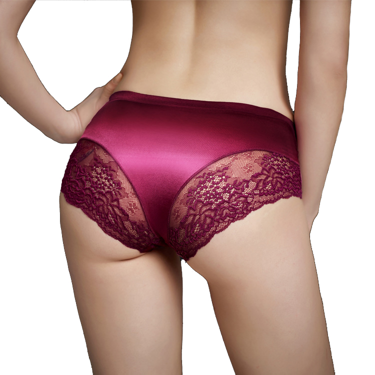 d0e769324f3 Pearlescent Silk Lace Seamless Underwear